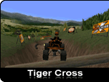 Tiger Cross